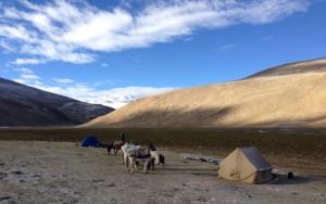 Camping very high.