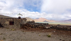 Nomads seasonal home at Tso Kar with dry yak dung staked along its stone walls.