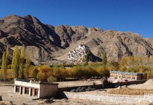 Along paved road east of Karu, the village Chemne and monastery set atop a hillock in the background. In the foreground right, a glorious example of the architecture typical to Ladakh, with mud-brick, stone for load bearing supports, infilled with light (and uninsulated) timber framed casement windows. The detail of the headers is intricate; even new, noticeably machine cut wood work has a particular dental-like molding. The roof is constructed using hundreds of [willow] branches with exposed, corded ends, and often, outside of Leh, the roof is further insulated with a store of stacked hey.
