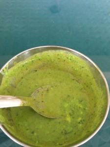 "Pudina chutney, ""made with mint coriander, cumin, yogurt and a bunch of other yummy spices."" Spicy and cool and tangy, a delicious Kashmiri dish."